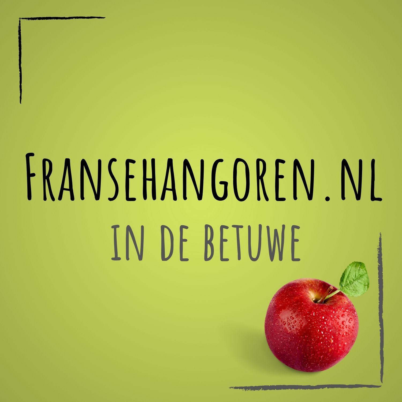 fransehangoren.nl Logo
